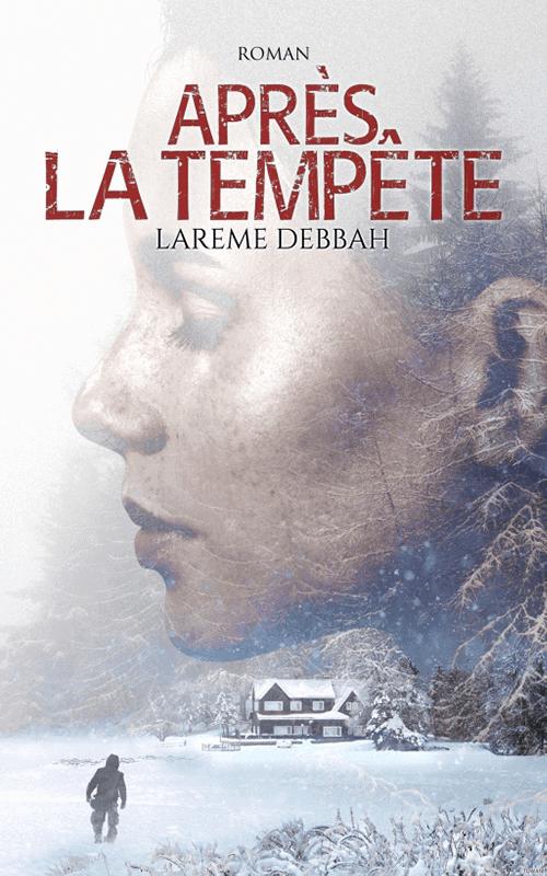 """Couverture du livre """"Après la tempête"""" de Larème Debbah"""